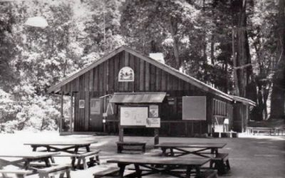 Camp Pico Blanco Is Ideal For Scout Summer Activity